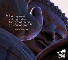 veganism and compassion vegan future now polin buddha text jpg