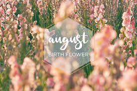 August Birth <b>Flower</b>: <b>Gladiolus</b> - FTD.com