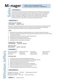 sample sales manager resume   sample  seangarrette co   sample  s manager resume   sample insurance account manager resume account representative