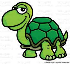 Image result for cartoon clipart turtle
