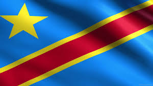 Image result for democratic republic of congo flag