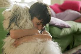 Responsible Pet Ownership for Kids | VetBabble