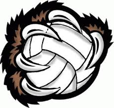 Image result for bear volleyball