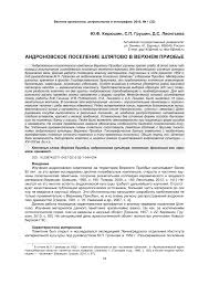 (PDF) Andronovo settlement Shlyapovo in the Upper Ob