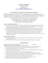 career profile resume examples template career profile resume examples