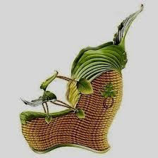 أحذية غريبة وعجيبة images?q=tbn:ANd9GcR