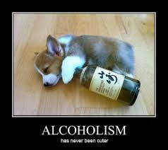 drunk-dog1.jpg via Relatably.com