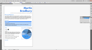cv and skills audit martinbradbury and