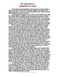 my experience in  being alone in a forest   gcse english   marked    page  zoom in