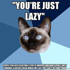 """you're just lazy"""" people too lazy to actually try to understand ... via Relatably.com"""