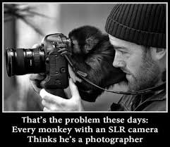 That's the problem these days - every monkey with a SLR camera thinks he's a photographer - thats-the-problem-these-days-every-monkey-with-a-slr-camera-thinks-hes-a-photographer