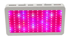 What are <b>full spectrum LED grow</b> lights? | Waveform Lighting