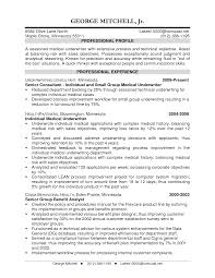 resume examples for insurance jobs resume builder resume examples for insurance jobs resume examples chronological and functional resumes commercial insurance underwriter resume