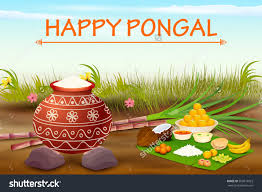 pongal festival clipart clipartfest pongal festival clipart save to a lightbox