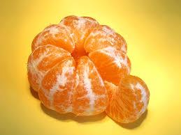 Image result for orange fruit