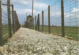 Image result for wieże straznicze
