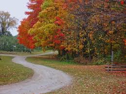 "Image result for ""the long and winding road"""