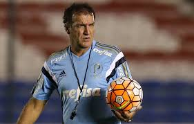 Image result for cuca técnico