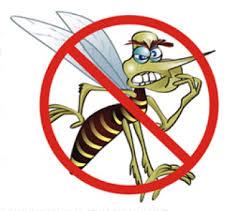 Risultati immagini per dengue