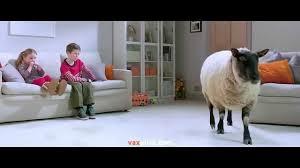vax rapide ultra carpet cleaner tv advert 2014