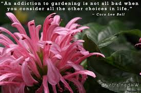 15 Inspiring Gardening Quotes and Sayings by Famous Authors | Home ... via Relatably.com