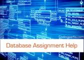 ASP NET Assignment Help  Quick  Instant and Urgent  Database assignment help for final year engineering students