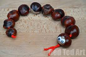Image result for conker pictures