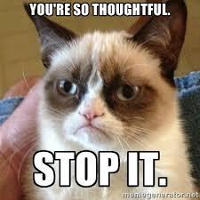 You're so thoughtful. Stop it. - Grumpy Cat | Meme Generator via Relatably.com