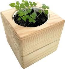 Набор для выращивания <b>ЭКОКУБ ECB</b>-<b>02</b>-<b>06 Мелиса</b> | купить ...