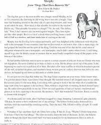 pet essay sample a dog essay musinxsl essay on pet peeves oglasi  a dog essay musin xsl pta dog essay