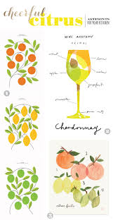 Lemon And Lime Kitchen Decor Blog Stained Aprons Strong Drinks