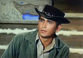 Image result for michael landon young
