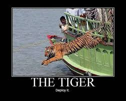 THE famous Tiger Attack video! So You Think You're Safe on That ... via Relatably.com