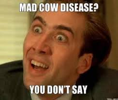 mad-cow-disease-you-dont-say-thumb.jpg via Relatably.com