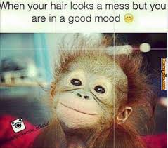 When your hair looks like a mess but you are in good mood, bad ... via Relatably.com