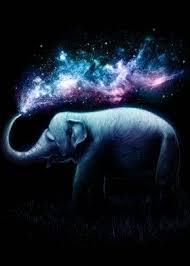 elephant animals space night sky stars universe splash sprinkle ...