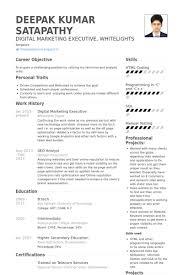 sales marketing resume page sample effect essay divorce buy paper    digital marketing resume samples visualcv resume samples database