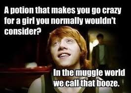 A Potion That Makes You Go Crazy For A Girl You Normally Wouldnt ... via Relatably.com