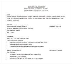 customer service resume template –    free word  excel  pdf    sales customer service resume free word template