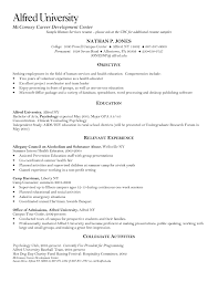 resume template professional cv templates what does a look 79 terrific what does a professional resume look like template