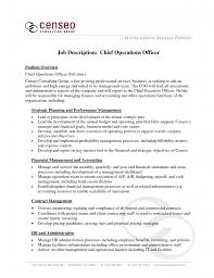 chief operations director coo resume ceo resum coo operations coo coo resume template word