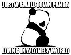 panda proof fat meme | Humour... | Pinterest | Fat Memes, Pandas ... via Relatably.com