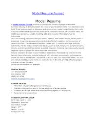 Aaaaeroincus Splendid Example Web Design Resume     Break Up     Inspiring Resumetemplatesadobemarketingmanager With Beauteous Federal Job Resume Template Besides Additional Information For Resume Furthermore Federal