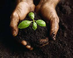 essay on land resources and types of soils found in