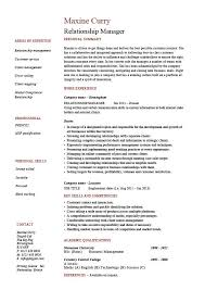 example of a one page resumes   viobo resume  the real thingone page resume example professional sample