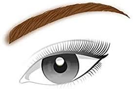 <b>L'Oreal</b> Paris <b>Brow Artist</b> Xpert Eyebrow Pencil, Brown, Retractable ...