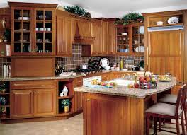 Decor For Kitchen Counters Kitchen Countertops Options Best Kitchen Countertop Decorating