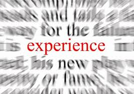 the term experience