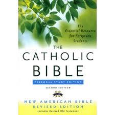 Gift Catholic Bible NRSV HarperCollins  Get help on any subject  homework help for School or Homeschool