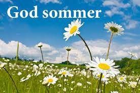 Bilderesultat for sommer